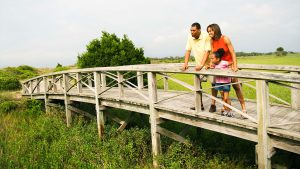 A photo of a family on a small wooden bridge looking out into the marsh.